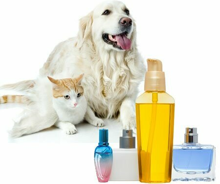 Dogs And Cats Perfume