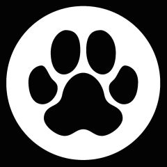 Transparent dog paw with white foil