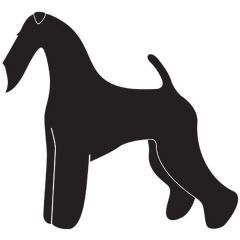 Dog Sticker - Airdale Terrier Sticker for the Dog Salon and Airdale Terrier Lover