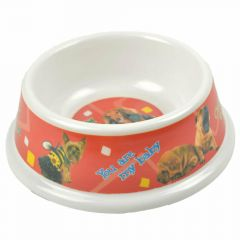 Cheap feeding bowls for dogs at Onlinezoo