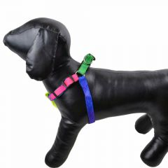 Rainbow dog harness for small dogs