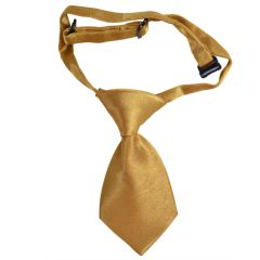 Dog tie - slip-on-tie for dogs golden yellow