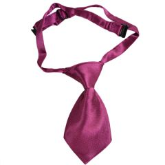 Dog tie - Self-tie for dogs bordeaux