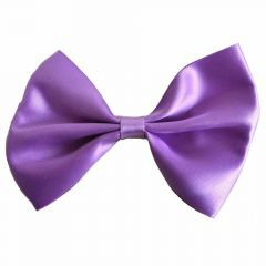Purple bow tie for dogs by GogiPet®