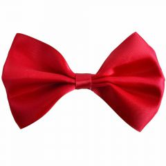Elegant red bow tie for dogs by GogiPet®.