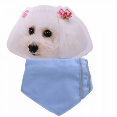 collar with towel light blue of 15 - 23 cm adjustable