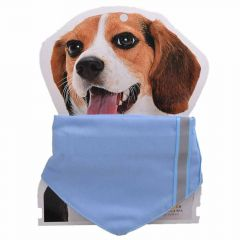 Light blue collar with neckerchief L