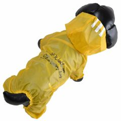 Modern yellow transparent raincoat for dogs