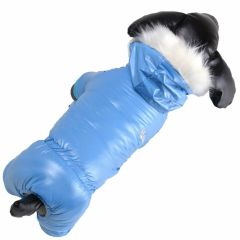 Robust, warm dog coat for the cold winter