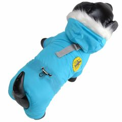 Beautiful Air Force dog jacket in light blue