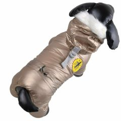 Golden Airforce coat for dogs