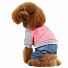Warm dog clothes by GogiPet® - pink dog anorak with jeans