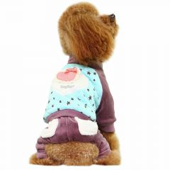 Warm dog coat Love light blue with stars