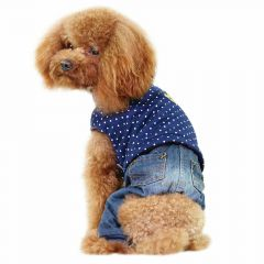 Navy Blue Royal dog clothes top with Jeans jacket jeans