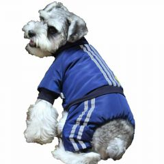 Blue Air Force dog snowsuit from GogiPet