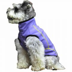 Purple dog raincoat by GogiPet