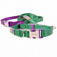 Premium dog collar with free dog leash green S