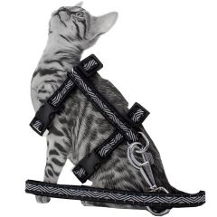 Black GogiPet cat harness with leash