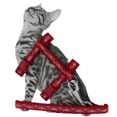 Red GogiPet cat harness with leash