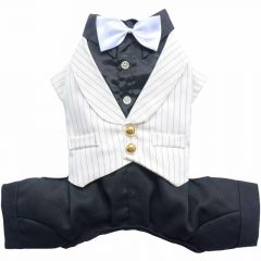 Dog Suit Pinstripe White for Dogs