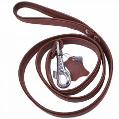 Brown dog leash in elegant floater leather