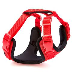 Red GogiPet Soft dog harnesses