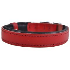 Handmade genuine leather dog collars from GogiPet