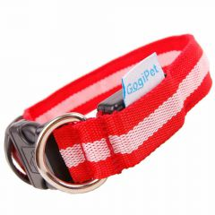 Size adjustable GogiPet ® LED collar red M