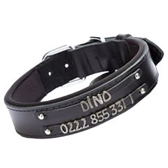 Double row name collar from GogiPet - Black comfort dog collar for letters and numbers to make your own