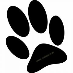 Paw stickers for the dog salon or car