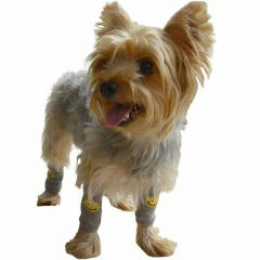DoggyDolly WM001 - Legwarmer for dogs - dog clothes