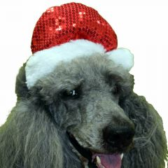 GogiPet Santa hats for dogs - Dog Clothing