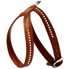 Wonderful Swarovski dog harness made of brown floater leather - GogiPet Swarovski dog harness