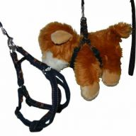 Denim harness and Denim leash GogiPet ®