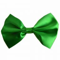 Green bow tie for dogs by GogiPet®