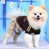 Buy Modern Dog Clothing at a great price
