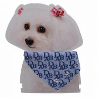 Blue dog collar with neckerchief