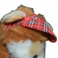 Big dog hat - canopy for dogs red