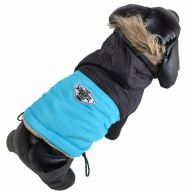 Warm anorak for dogs - Dog clothing