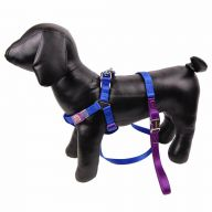 Touchdog dog harness with blue leash peacock M