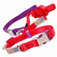 Premium dog collar with free dog leash red M