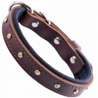 GogiPet ® Swarovski leather dog collar brown with 35 cm