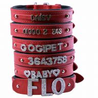 Phone numbers dog collar red made of genuine leather