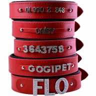 GogiPet ® Individual name dog collar made of real leather red 60 cm with 3 adapters