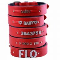 GogiPet ® Individual name dog collar made of real leather red 65 cm with 3 adapters