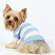 Blue and white striped dog sweater DoggyDolly fashions at Onlinezoo