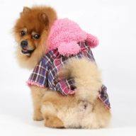Cute dog coat with pink ears and hood
