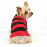 Beautiful red dog sweater for winter