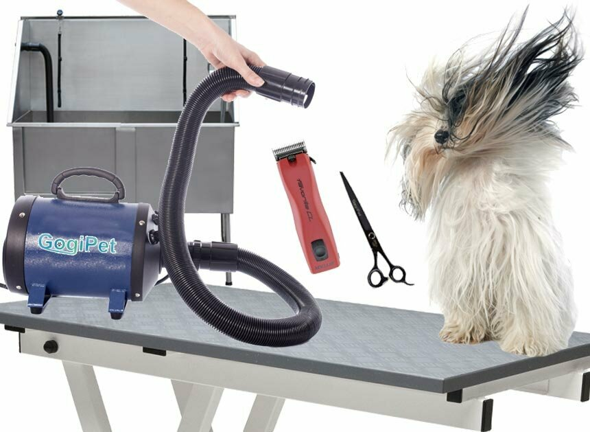 Dog salon equipment for dog hairdressers
